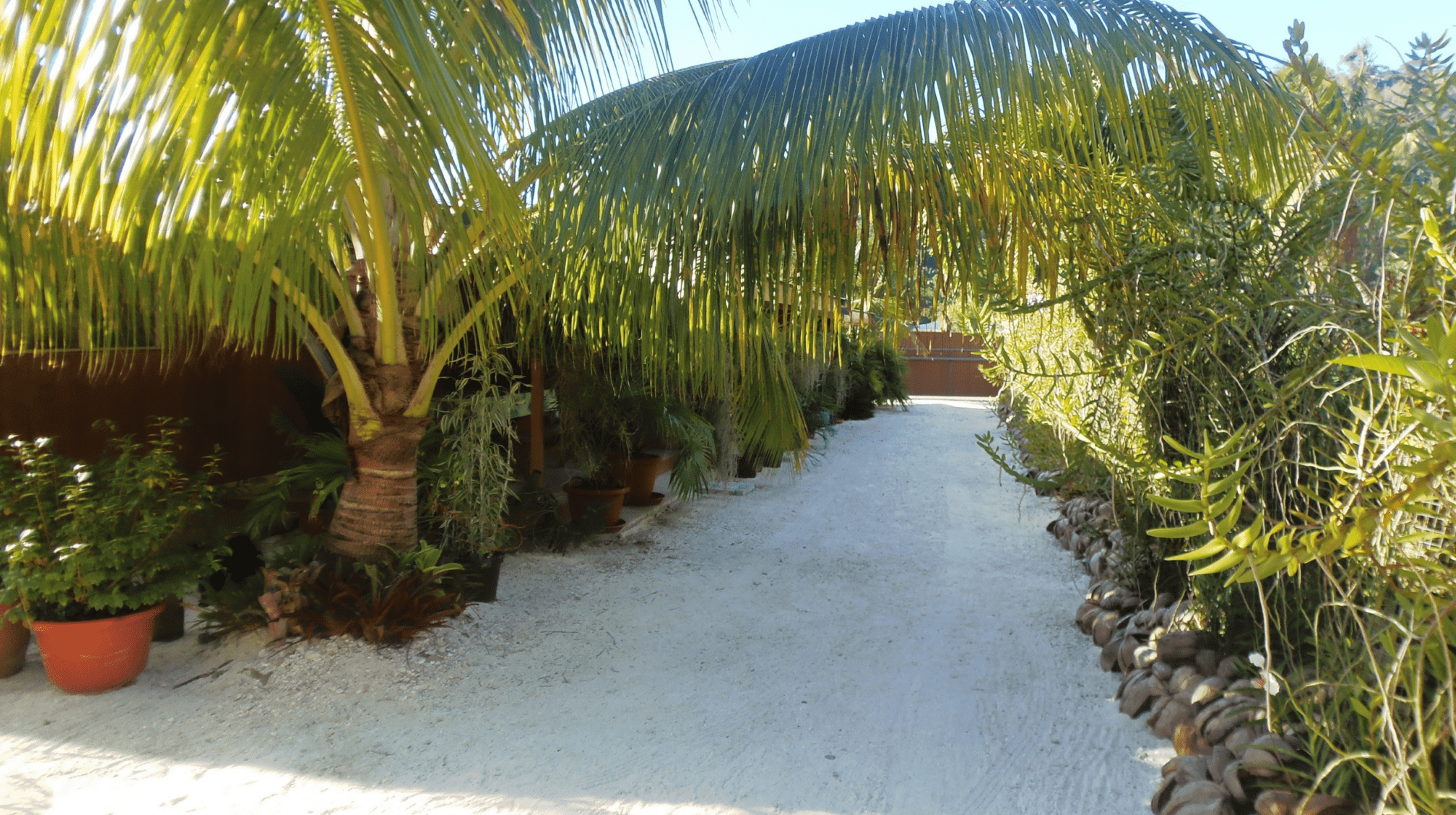 Fare ara huahine central path